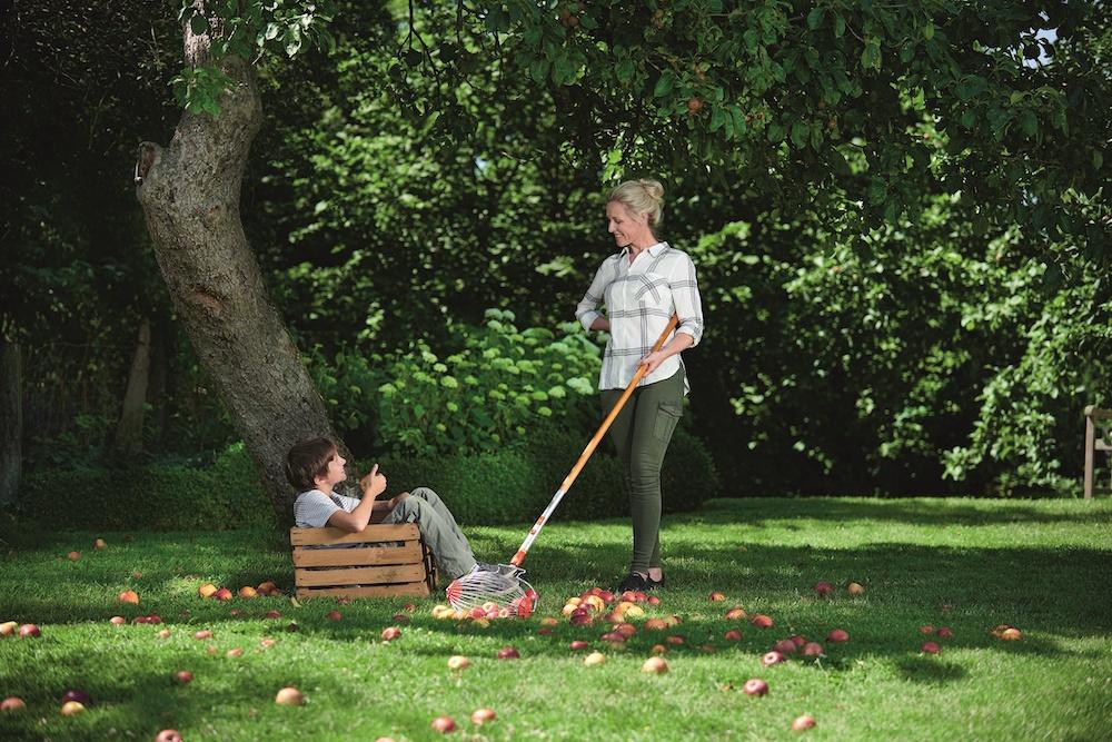 Tuintrends 2020. Slim en ergonomisch tuinieren. Oogsten en oprapen van fruit met de multi-star fruit en notencollector van Wolf Garten #tuinidee #tuinieren #tuintrends #tuingereedschap #tuin #wolfgarten