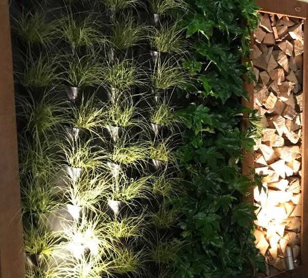 Zeno Green Divider tuinafscheiding met plantensysteem met irrigatie. Verticaal tuinieren #zeno #tuinafscheiding #planten