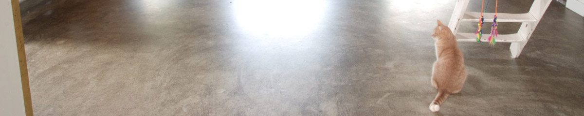 Woonbeton coating