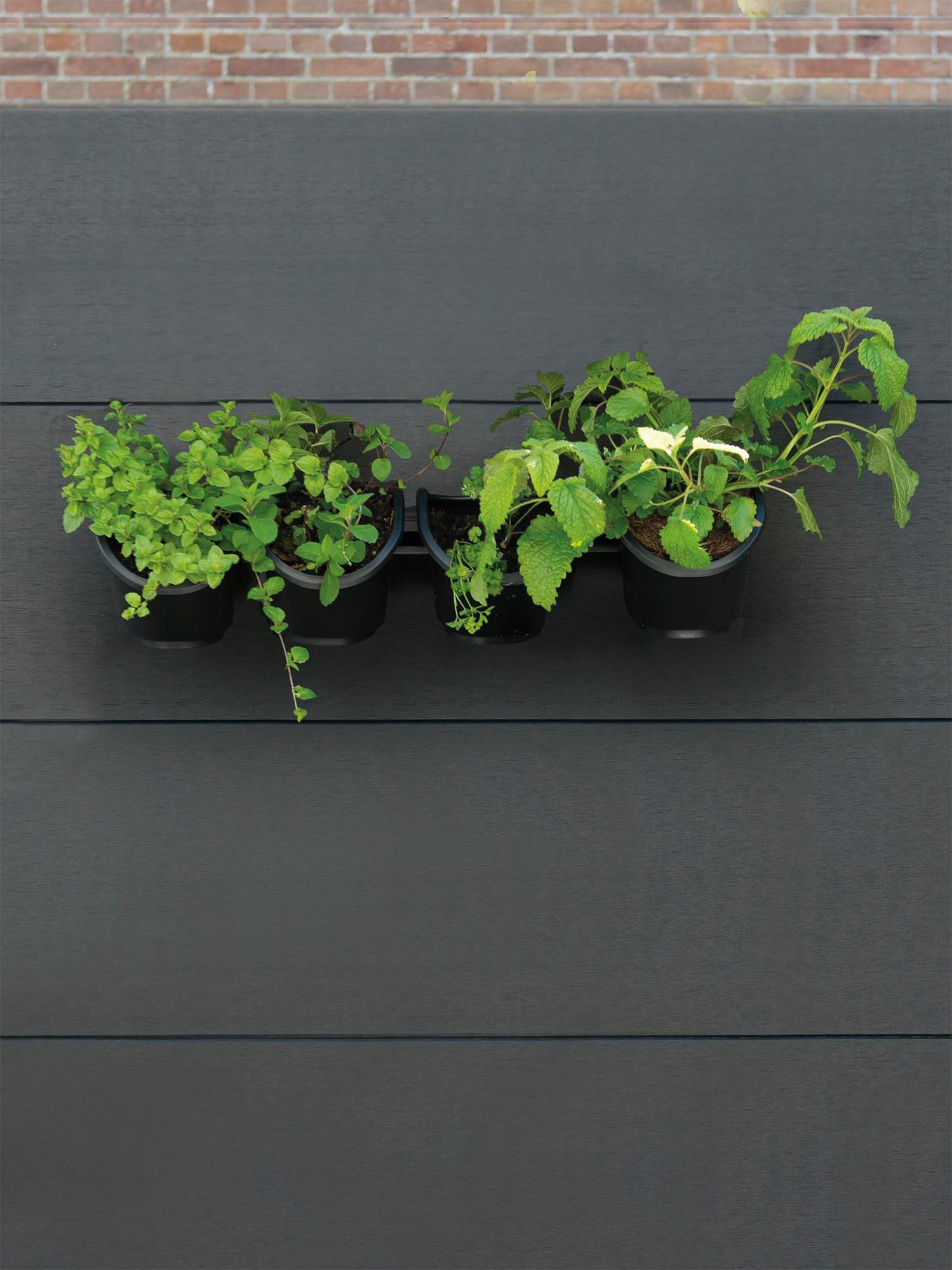 Verticale kruidentuin hangend aan schutting van Nature #kruidentuin #kruidentuintje #tuin #tuinidee