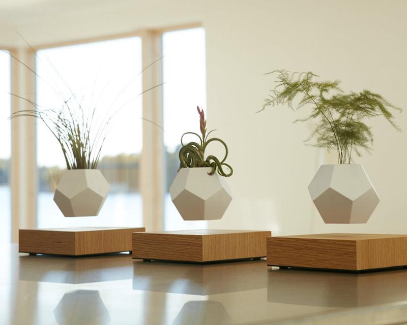 FLYTE eiken plankje die planten laat zweven via Wooden Amsterdam #interieur #design