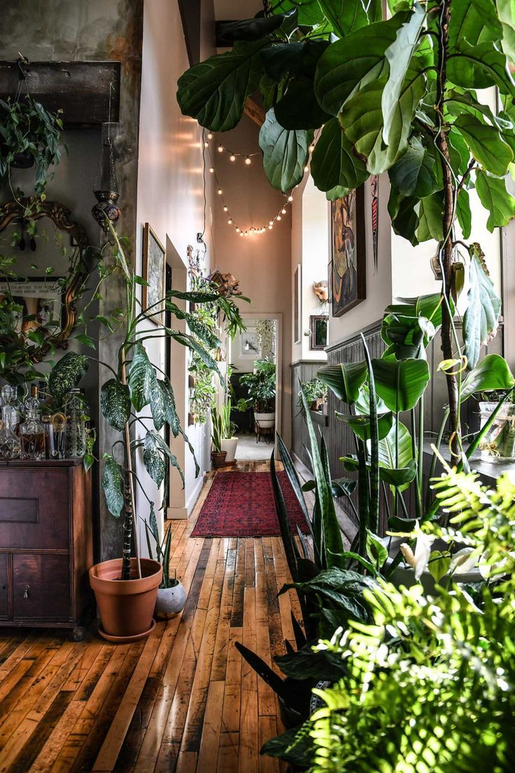 ultimate wonderplants copyright Hilton Carter #interieur #groen #planten