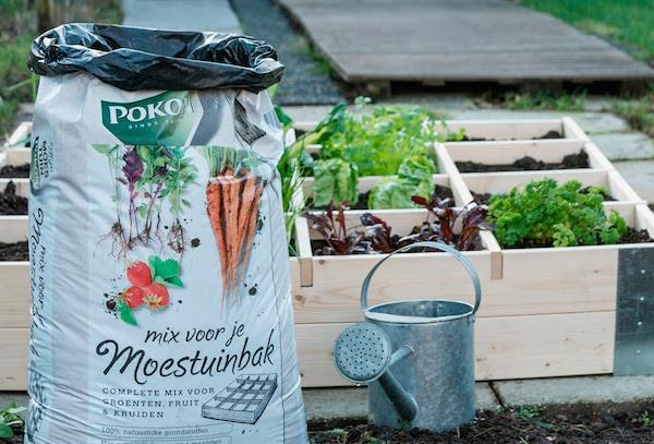 Groenten met Pokon uit eigen tuin