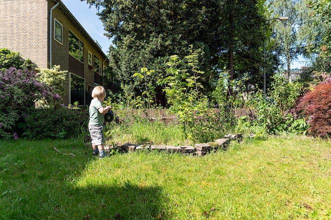 Meer groen minder tegels in je tuin