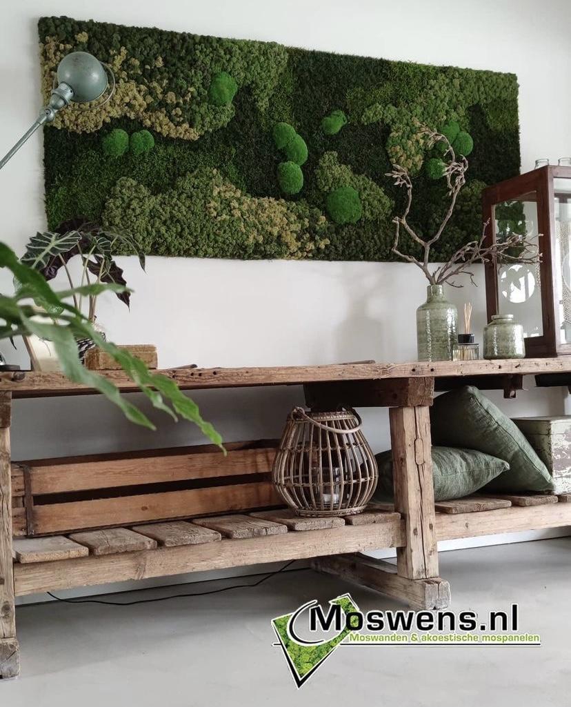 Mosschilderij mosselmix. Interieur. Groen #interieur #mosschilderij #moswens #wanddecoratie
