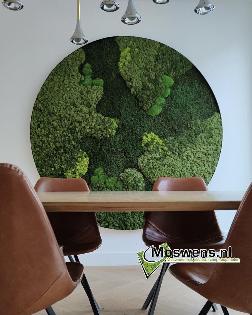 Mosschilderij van Moswens. mosscirkel met stalen rand met een doorsnede van maar liefst 180cm #mosschilderij #moswens