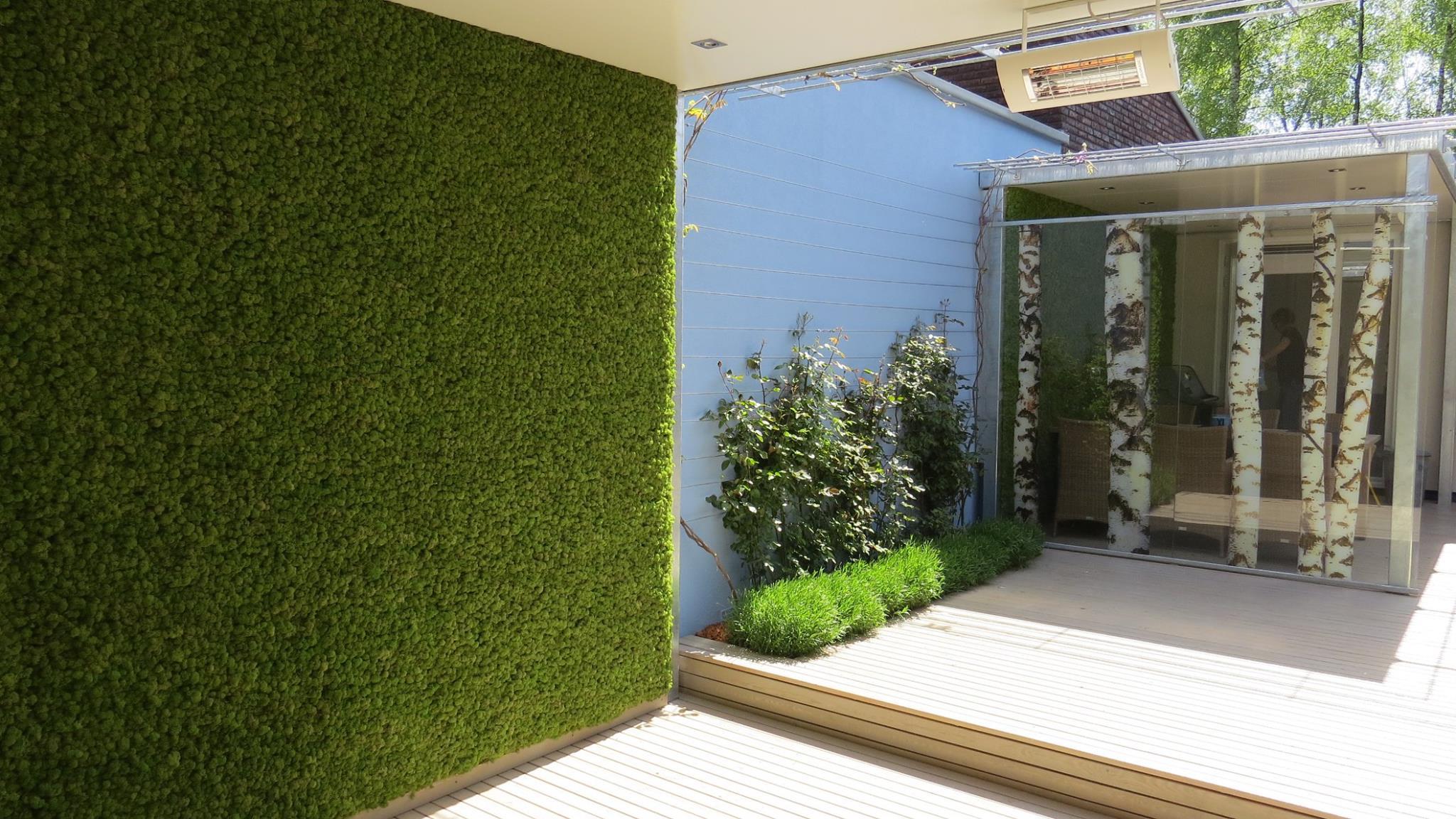 Groene muur van mos op je terras op maat gemaakt door Moswens #tuin #moswand #tuinidee
