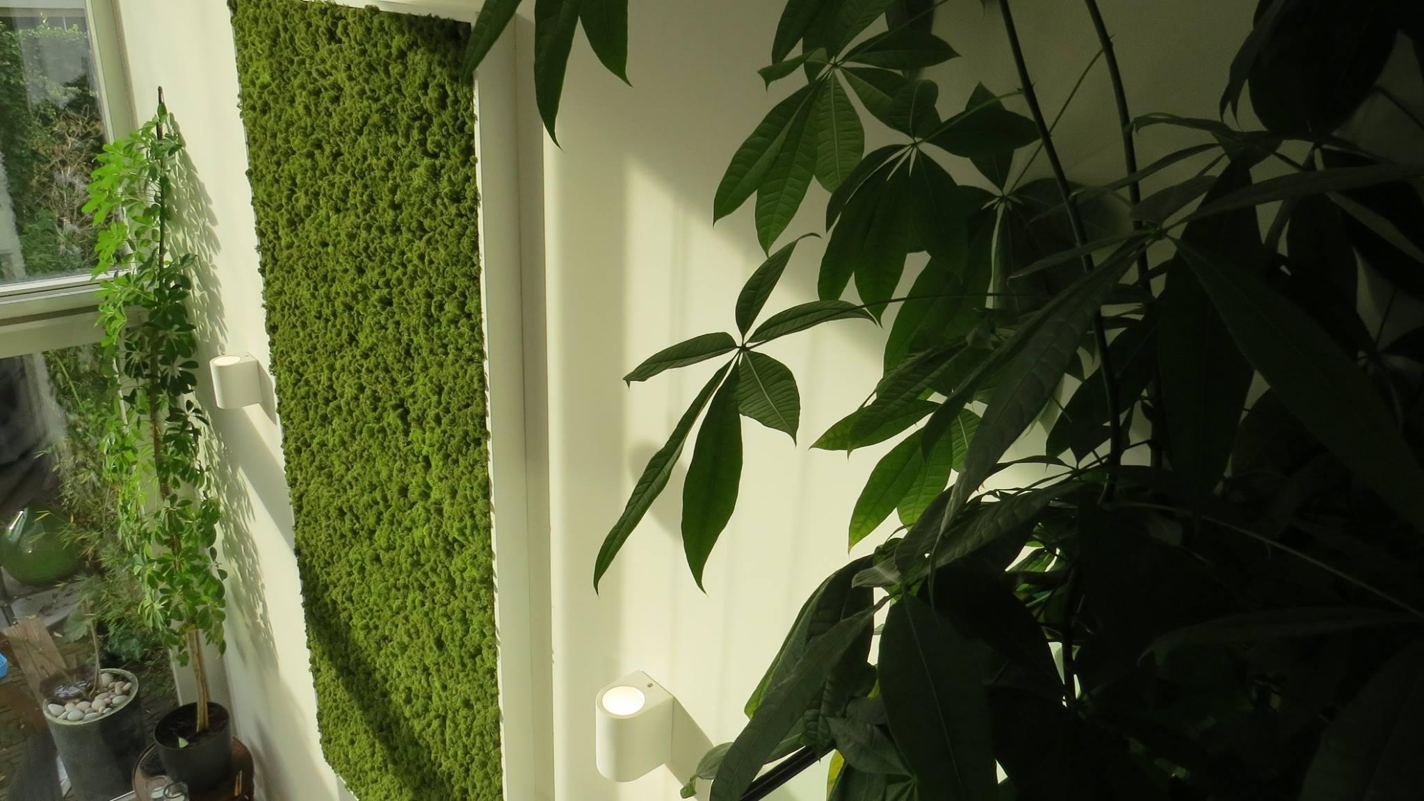 mosschilderij van Moswens in interieur #groen #schilderij #mos #moswens